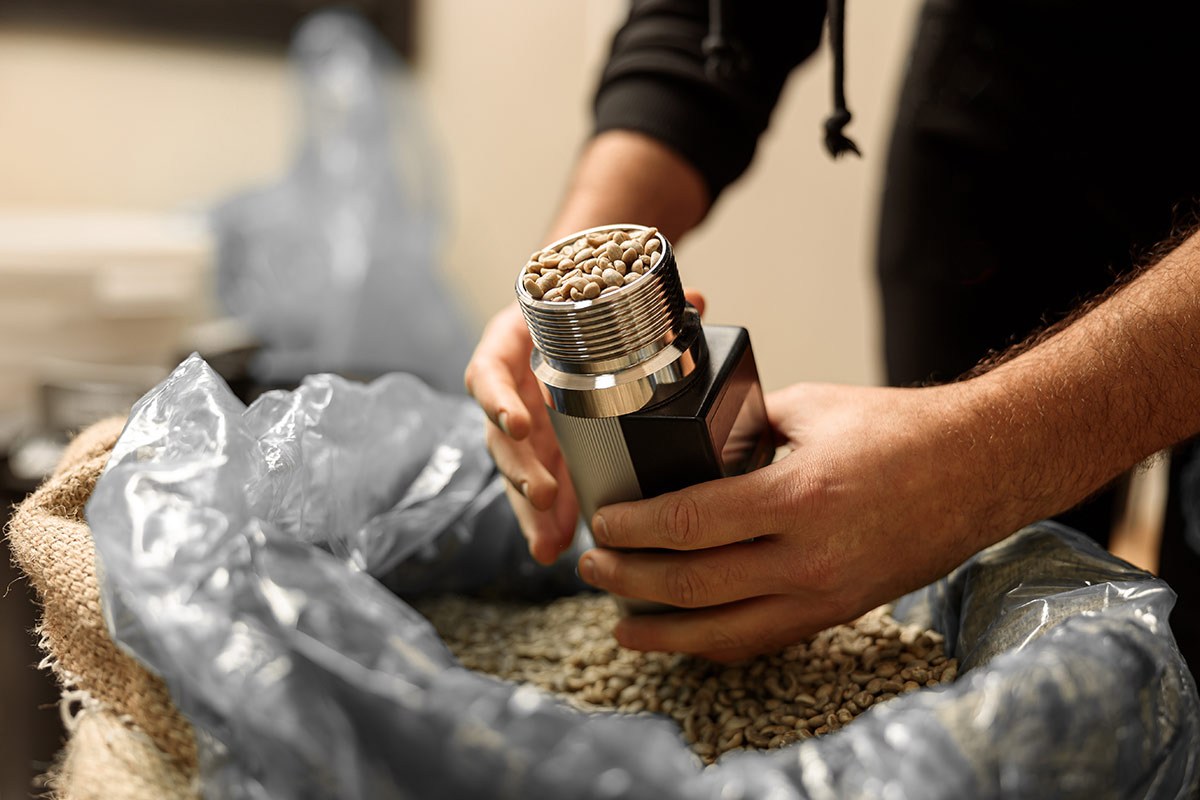 dobór ziaren kawy