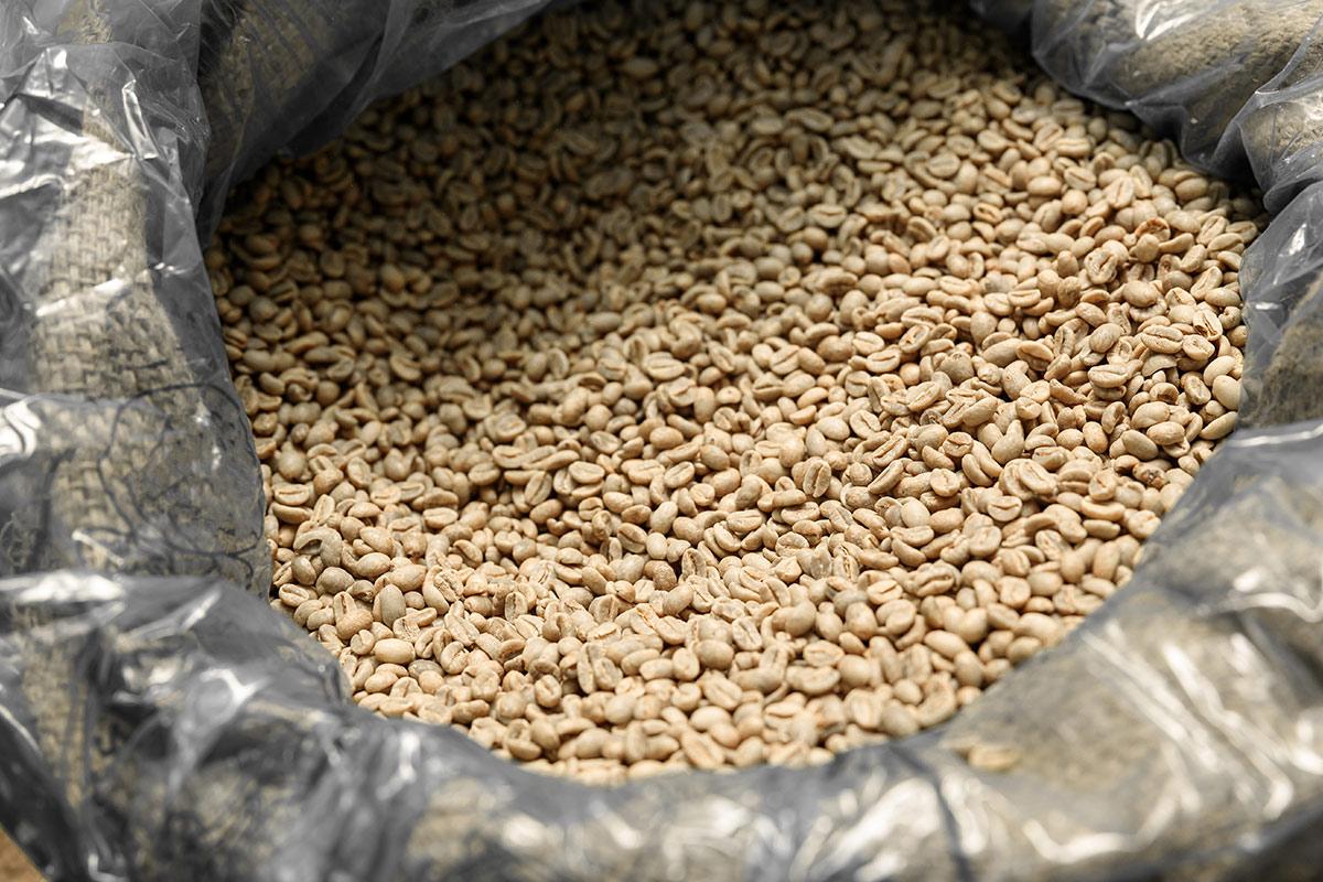 surowe ziarna kawy